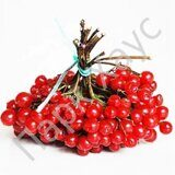 Viburnum fruit
